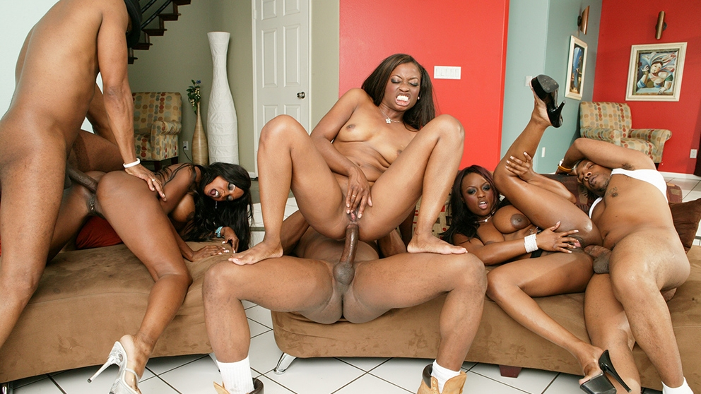 Black orgy group sex
